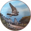 """ROYAL DOULTON  """"LORD OF THE SKY PEREGRINE FALCON""""  PN35  GIFT BOXED  MIB"""