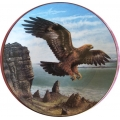 """ROYAL DOULTON  """"LORD OF THE SKY THE EAGLE""""  PN36  GIFT BOXED  MIB"""