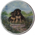 "ROYAL ALBERT  ""PLAYFUL PUPPIES GERMAN SHEPHERD DOGS PLATE 21 cm"" RAGS MIB"